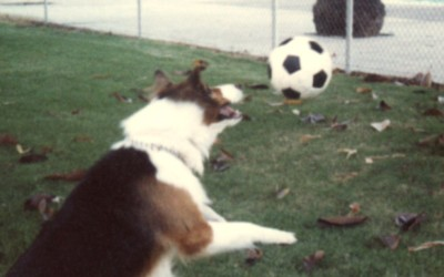 1980 Chubby playing soccer 4