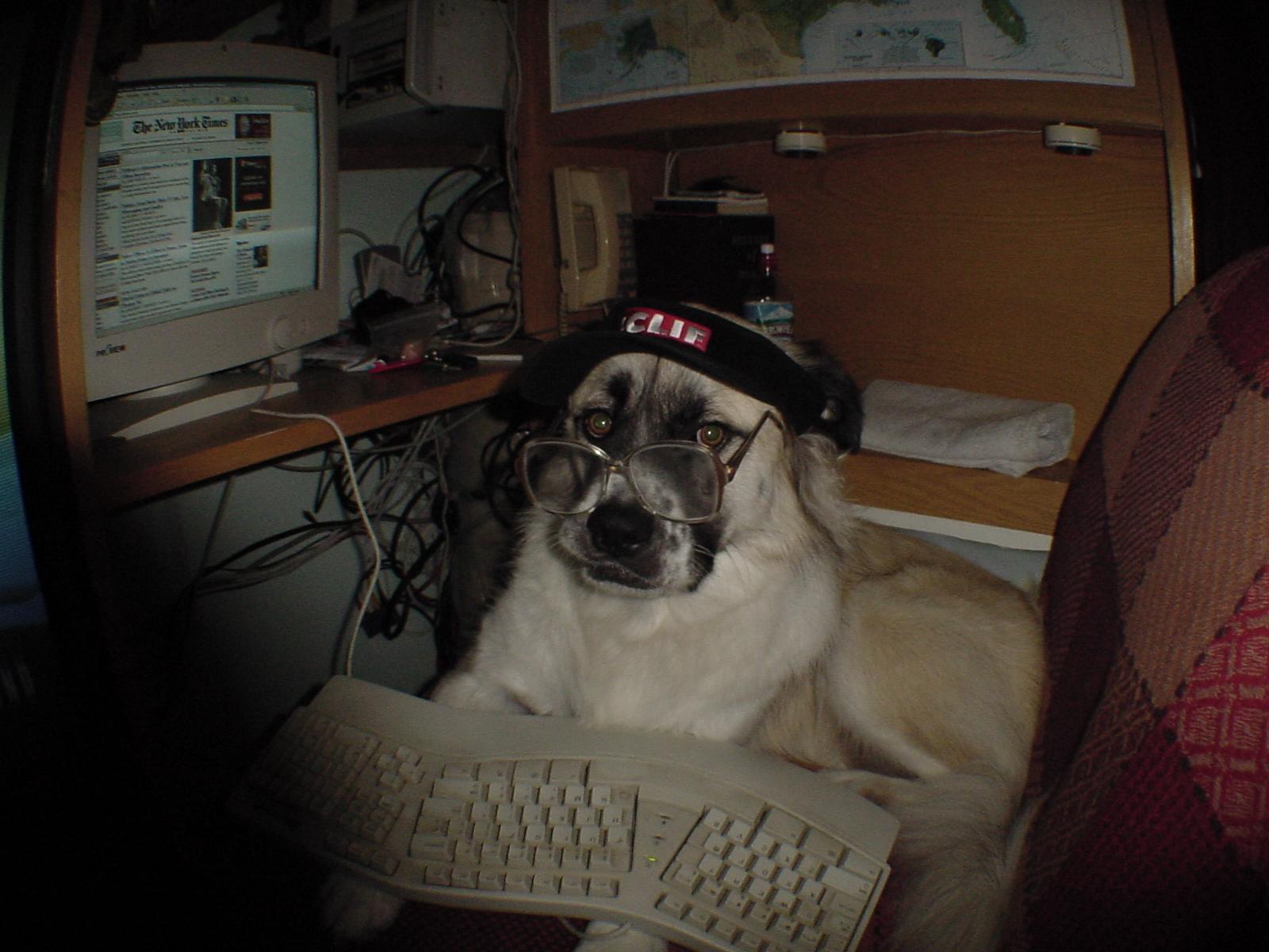 Herman at keyboard with visor