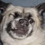 Herman grinning
