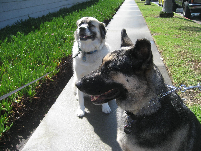 Herman and Tyra