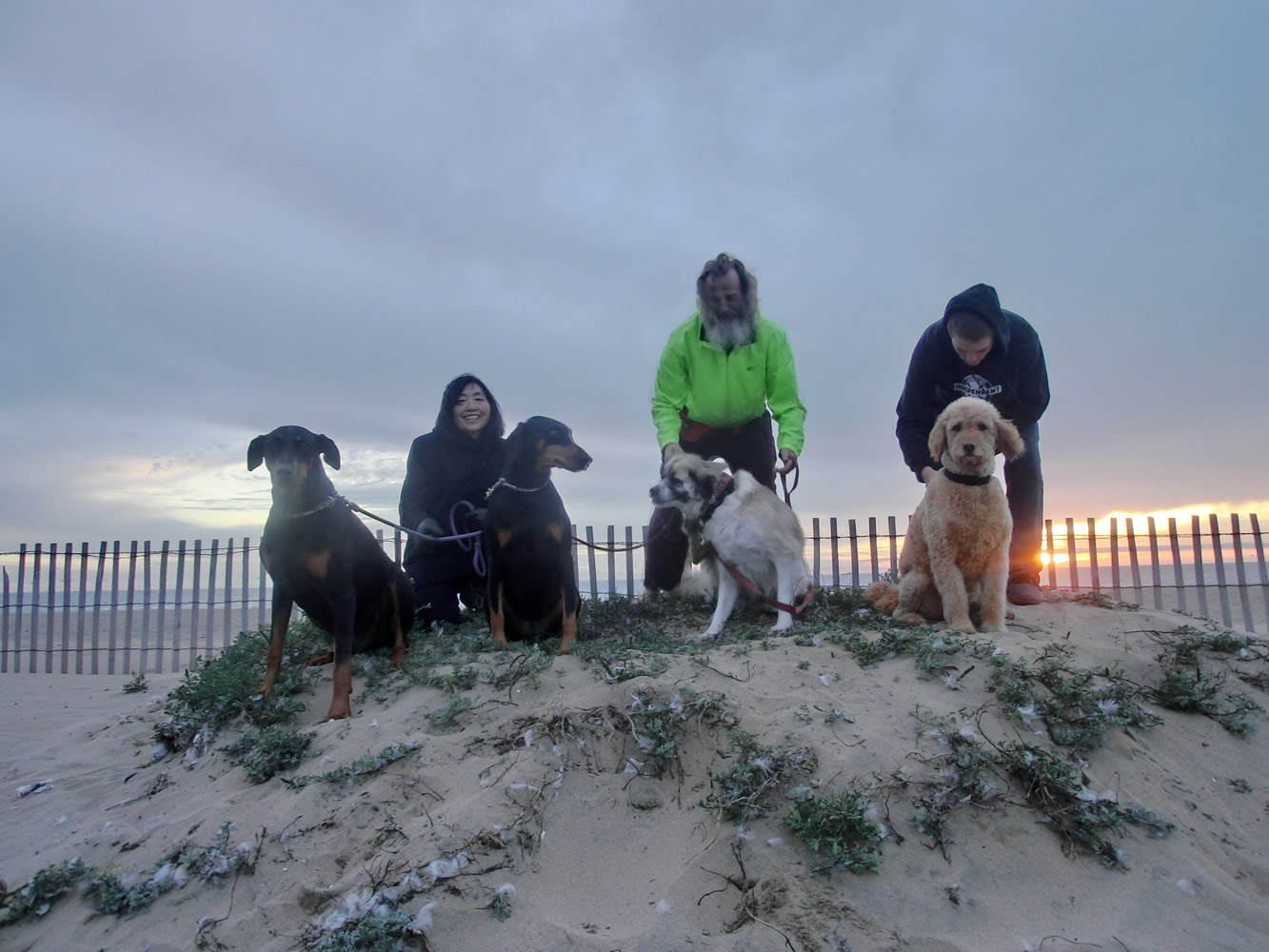 Willie, Alice, Phoebe, Ken Bob, Herman, Trevor, Kasey, Bolsa Chica State Beach, Huntington Beach CA