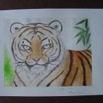tiger, watercolor