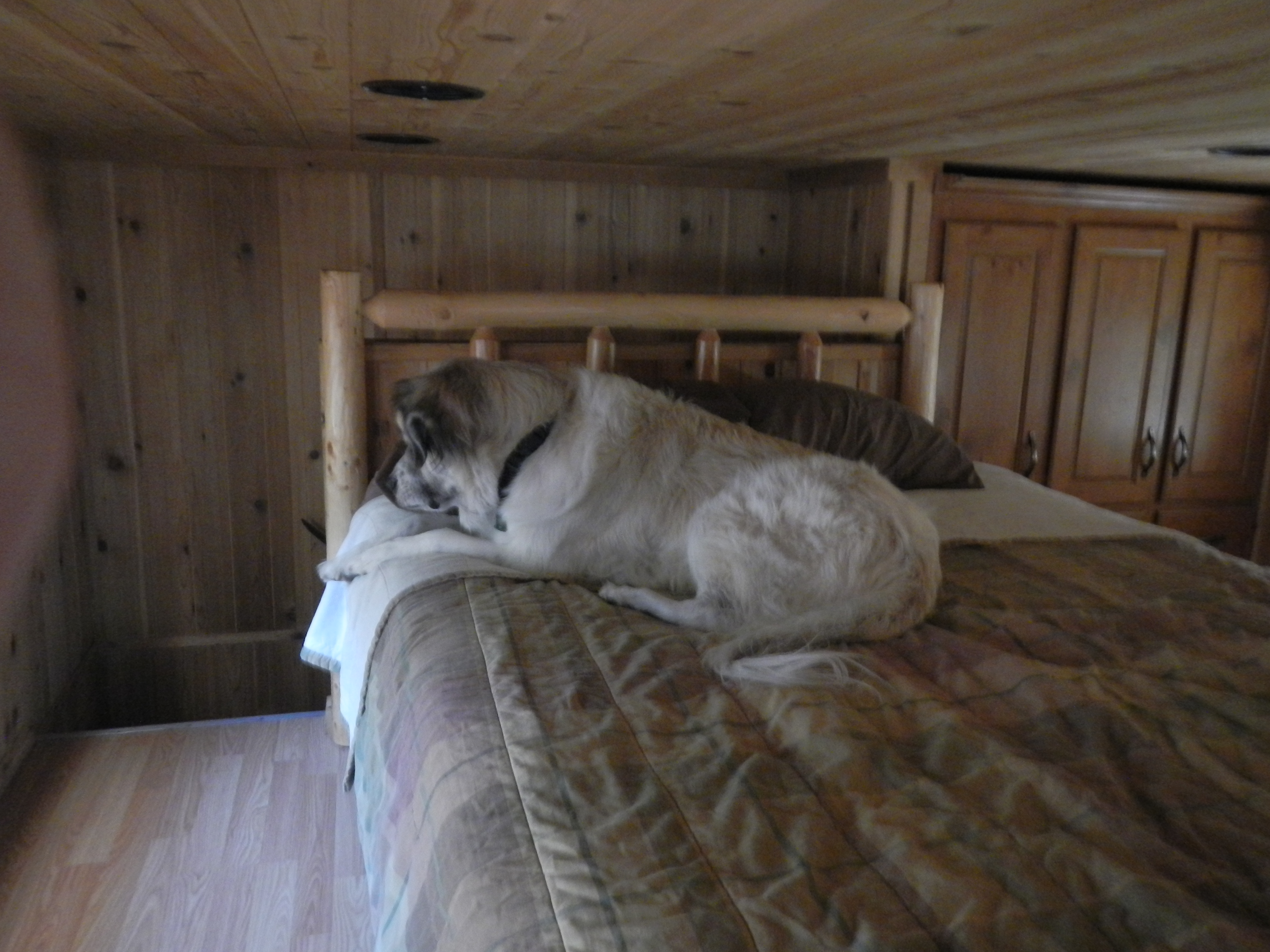 It's good we got the larger cabin with the loft, so I can have my own bedroom