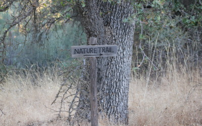 Nature Trail at Yosemite Pines Resort